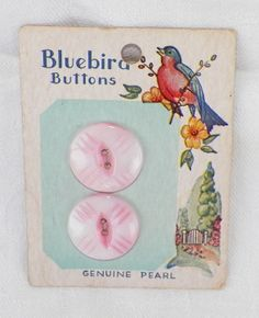 """ButtonArtMuseum.com - Vintage Bluebird Marked Genuine Pearl Buttons 3 4""""not Removed from Original Card"""