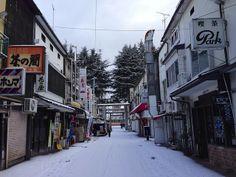20140205桜山