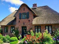Föhr Lavendelhaus (30280) - Ferienhaus Oevenum