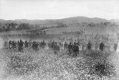 "WWI Centennial: ""The War to End All Wars"" | Mental Floss"