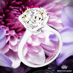 Contemporary Classic Solitaire Engagement Ring | 1416