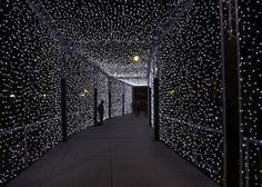 A starry night tunnel! Light Tunnel, Starry Lights, Night Circus, In This Moment, Black And White, Total Black, White Art, Black Silk, Pictures