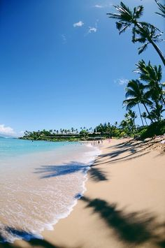 Napili, Hawaii... - Explore the World with Travel Nerd Nici, one Country at a Time. http://TravelNerdNici.com
