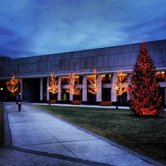 O'Neill Library Ready for the Holidays! | Repinned from Max Mitrokostas