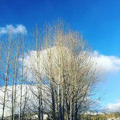 #Bluebird day on this #NewYears #Eve in #Breckenridge!