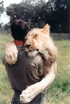 I'd be in my glory if a lion hugged me.
