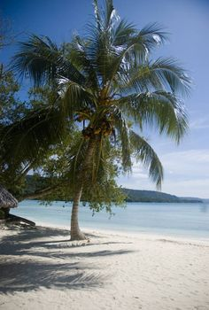 Solomon Islands. Swim and let the sun dry you on these pure white sands.
