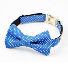 Felix Chien - Blue Dot Bow Tie Designer Dog Collar (http://www.felixchien.com/blue-dot-bow-tie-collar/)