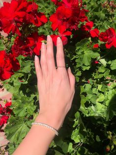 Hand Modeling, Golden State, Engagement Rings, Jewelry, Instagram, Enagement Rings, Wedding Rings, Jewlery, Jewerly