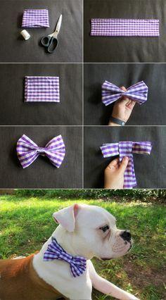 DIY: Dog Collar Bow Tie