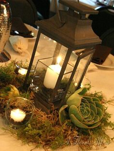 RF0588-Low Lantern and Succulant Centerpiece