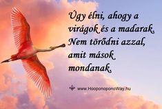 Hálát adok a mai napért. Úgy élni, ahogy a virágok és a madarak. Nem törődni azzal, amit mások mondanak. Nem versenyezni, de szállni, repülni... Életünk magaslata felé.  Így szeretlek, Élet!  Köszönöm. Szeretlek ❤  ⚜ Ho'oponoponoWay Magyarország ⚜ Mindfulness, Fish, Thoughts, Sayings, Quotes, Movie Posters, Pictures, Quotations, Photos