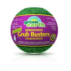 Green Earth Grub Busters Nematodes control a variety of destructive insect larvae, including White Grubs, the larvae of European Chafer, Japanese beetle and June beetle. Japanese Beetles, Green Earth, Grubs, June, Lawns, Projects, Decor, Lawn