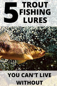 Best Trout Lures, Trout Fishing Lures, Crappie Fishing Tips, Fishing Guide, Carp Fishing, Fishing Tricks, Fishing Tackle, Fishing Rods, Best Trout Bait