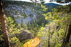 Lappland, Flora And Fauna, Wilderness, Matka, Places To Go, Europe, The Incredibles, Nature, Landscapes