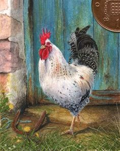 cockerel farmyard miniature painting in watercolour