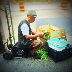 Working on them greens #inthahood  Forthetableandthepocketville