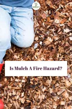 I love using Mulch. It can really cut down the work in the garden. But is it a fire hazard? | garden home | in home gardens | container garden | ideas garden | vegtable gardens | #vegetablegardentips #homegrown #gardeninglife Raised Garden Beds, Raised Beds, Container Gardening, Gardening Tips, Vegetable Garden Soil, Types Of Mulch, Organic Soil, Lawn Care, Compost