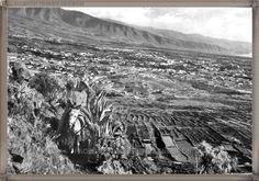 Valle de Güimar  año 1960..... #canariasantigua #blancoynegro #fotosdelpasado #fotosdelrecuerdo #recuerdosdelpasado #fotosdecanariasantigua #islascanarias #tenerifesenderos