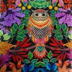 Art work Owl (81 pieces)