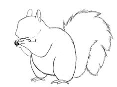 It has been a few days since my last post, but today we are going to learn how to draw a squirrel. In fact, this is my first post since Draw Central's new redesign. So without further ado, let's draw a squirrel. What you'll need: HB (#2) Pencil, 4B pencil Eraser Drawing paper Drawing surface …