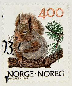 beautiful stamp postzegel Norge Norway 4.00 kr. Norwegen squirrel écureuil Eichhörnchen ardilla scoiattolo белка | Flickr - Photo Sharing!