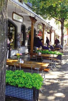 Stellenbosch - the street cafe / coffee shop culture is a big part of the town's… The Places Youll Go, Places To Go, South Afrika, Namibia, Le Cap, Cape Town South Africa, Out Of Africa, In Vino Veritas, Africa Travel