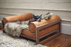 Modern Pet Furniture That Will Look Great In Your Home. Architect Pets. http://www.relaxingdoggy.com/product-category/beds-furniture/bed-pillows/