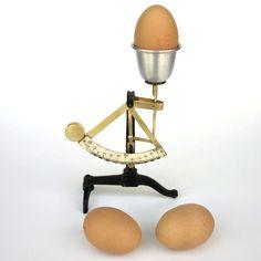 HG_02121_a_egg-scale-.jpg (1000×1000)