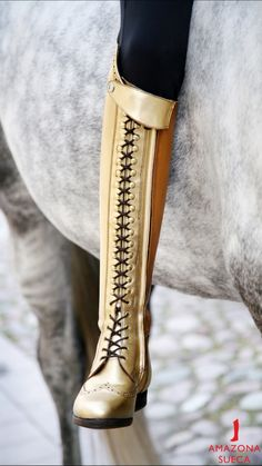Horse Riding Boots, Riding Gear, Horse Tack, Equestrian Outfits, Equestrian Style, Horse Showing, Barn Stalls, Riding Clothes, Long Boots