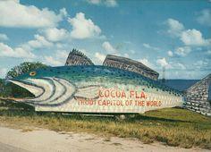 cocoa beach florida | Vintage Travel Postcards: Cocoa and Cocoa Beach, Florida
