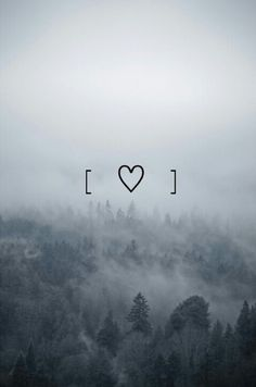 Image via We Heart It https://weheartit.com/entry/161174018/via/22302906 #bosque