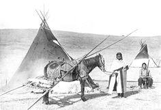 coverd wagon replicas - Google Search