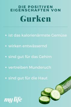 Sprouts, Zucchini, Vegetables, Food, Medical Facts, Positive Characteristics, Healthy Food, Simple, Essen