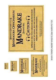 """Tuto FIMO pour fabriquer une mini Mandragore. Etiquette """"Mandrake"""" (Magragore en VO) (Plusieurs tailles si vous souhaitez utiliser l'étiquette pour des pots de fleurs à la maison) ———— ♥️ 📚 www.transplanerhp.wixsite.com/harrypotter/ #harrypotterfan #harrypotterworld #harrypotterforever #diy #diyhomedecor #diyproject #doityourself #diyharrypotter #diynoël Harry Potter World, Harry Potter Diy, Harry Potter Bricolage, Anniversaire Harry Potter, Hogwarts, Netflix, English, Magazine, Decoration"""