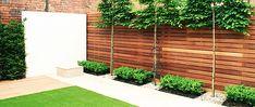 Garden Landscaping Portfolio, Crouch End, North London   Garden Transformations