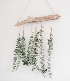 {Simple Home} A Eucalyptus Wall Hanging – This House Our Home – Dorm Room İdeas 2020 Decoration Branches, Branch Decor, Hanging Decorations, Diy Wedding Wall Decorations, Hanging Flower Wall, Boho Wall Hanging, Flower Wall Decor, Diy Wall Decor, Decor Crafts