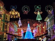 Osborne Lights at Disney World- this is the coolest light display I've ever seen