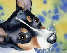 RAT TERRIER Dog Signed Art Print by Artist DJ Rogers