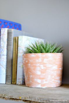 It's so easy to add simple rustic charm to a plain terra cotta pot, all you need is a little paint!