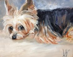 """Daily Paintworks - """"Daisy Mae"""" - Original Fine Art for Sale - © Annette Balesteri Yorkies, Yorkie Dogs, Yorshire Terrier, Silky Terrier, Watercolor Animals, Watercolor Art, Dog Artwork, Yorkshire Terrier Puppies, Dog Portraits"""