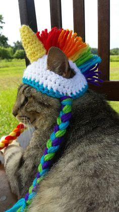 chat arc en ciel - Google Search
