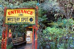 The Mystery Spot  I know, cheesy!!  These are the types of places that I miss from my old US road trips, though.  :)