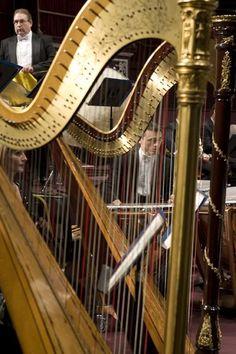 ....harp