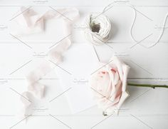 Bloggers styled stock photography, roses, white flatlays,background