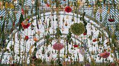 Londres : une pluie de fleurs par Rebecca Louise Law