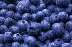 blueberries - 1) Keep your Mind mentally sharp 2) Prevent parkinsons and manage Diabetes 3) Lower Blood Pressure 4) Help reduce Cancer risk  5) Lower Alzheimer Risk 6) Help with UTI's    7) Anti inflamatory 8)