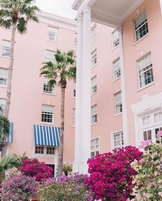Gal Meets Glam Travel Series: Top Trip Booking Tips - Palm Beach
