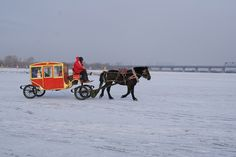 Horse-drawn #coworking carriage on a China frozen river? Why not! just for two, I guess :-)