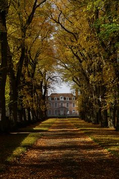 Beautiful Homes, Beautiful Places, Plantation, My Dream Home, Old Houses, Abandoned Houses, Exterior Design, Future House, Scenery